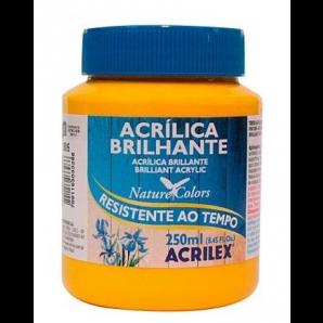 TINTA ACRÍLICA BRILHANTE 250ML ACRILEX 505 AMARELO OURO
