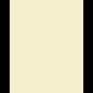 PAPEL CANSON VIVALDI COLOR MARFIM 50X65