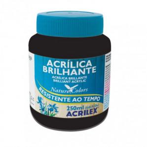 TINTA ACRÍLICA BRILHANTE 250ML ACRILEX 520 PRETO